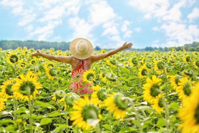 sommerfrisk og glad